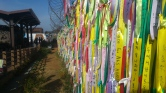 peace ribbons