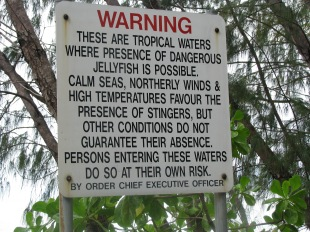 Warnings at the beach