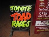 Toad races at the pub